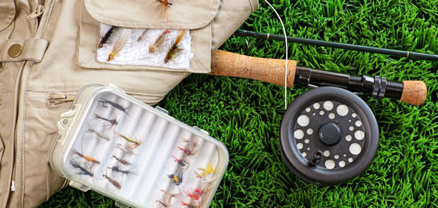Catch More Fish – The Simple, Free Way To Increase Strikes By 50% Or More – Guaranteed!